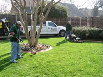 Seamans Lawn Landscape Landscaping Lawn Care Maintenance